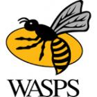 Bristol v Wasps