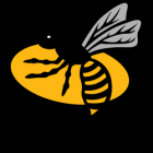Wasps v Tigers Match Preview by ChrisC