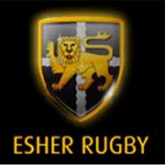 Our visitors this week - Esher r.f.c.