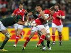 First Autumn challenge - Wales v South Africa