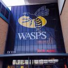 Some Advice For New Wasps Supporters