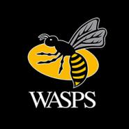 Wasps secure Quarter Final with bonus point win in Parma