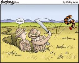 How to catch a Tiger with this Tale !!