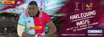 Harlequins vs Wasps: Out but not Down