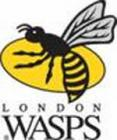 News: AP: Wasps vs Northampton Saints - Match Preview