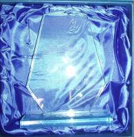Carol wins DSE Volunteer Award