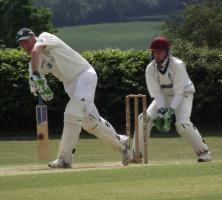 Midweek Cricket Returns